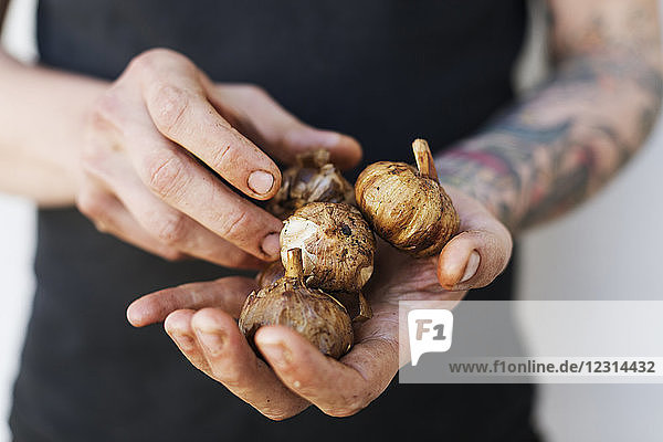 Mid section of man holding fresh garlic