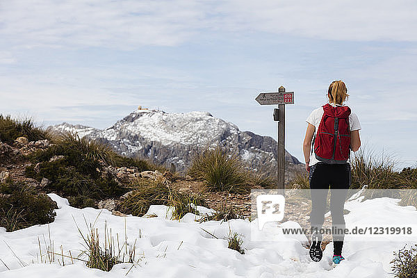 Serra de Tramuntura  hiker on Puig de Massanella  Mallorca's highest accessible peak  Majorca  Balearic Islands  Spain  Mediterranean  Europe