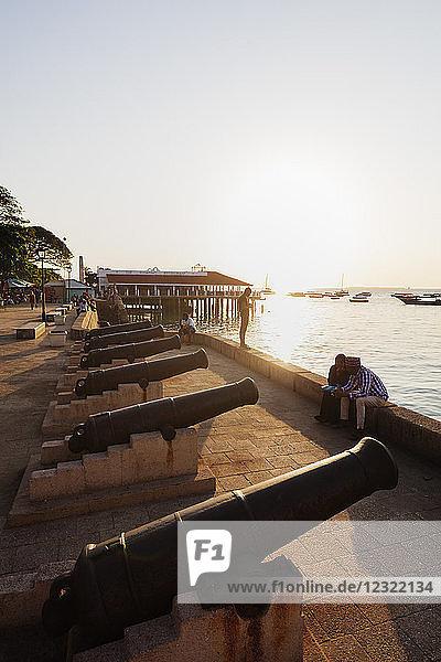 Cannon on the waterfront  Stone Town  Island of Zanzibar  Tanzania  East Africa  Africa