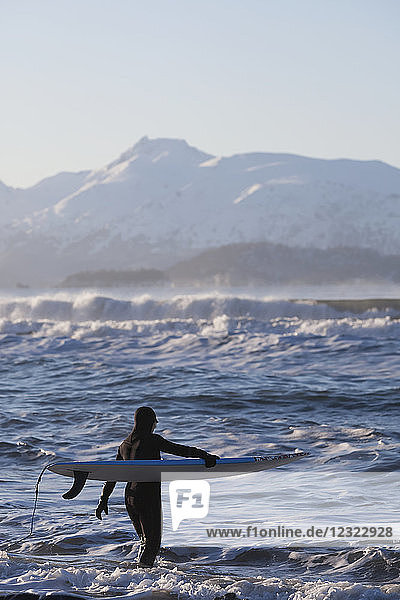 Female surfer enters the waters of Kachemak Bay  South-central Alaska; Homer  Alaska  United States of America