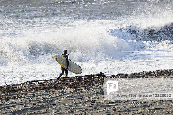 Surfer with his board walking along the shore with crashing waves in the background  Southeast Alaska; Yakutat  Alaska  United States of America