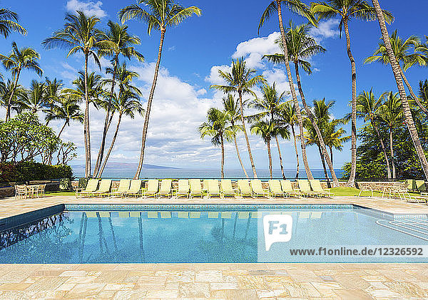 Tropical Resort Pool With Lounge Chairs  Palm Trees  And Ocean View