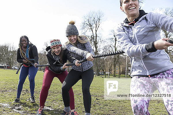 Determined women pulling rope in tug-of-war in sunny park