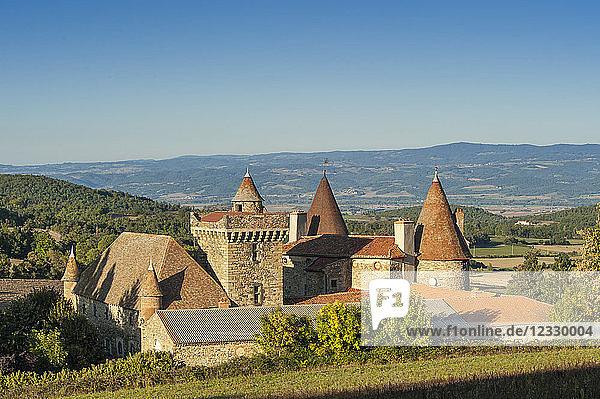 France  Auvergne-Rhones-Alpes  Haute-Loire  the castle of Lespinasse  near Brioude