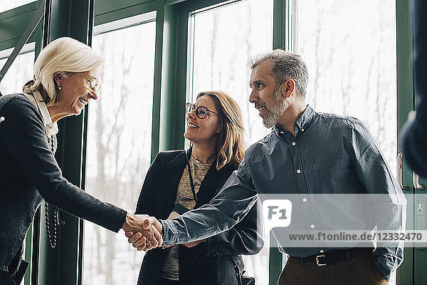 Mature businessman greeting senior colleague in meeting at office
