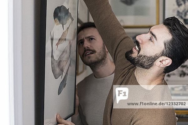 Young gay couple hanging painting on wall at home