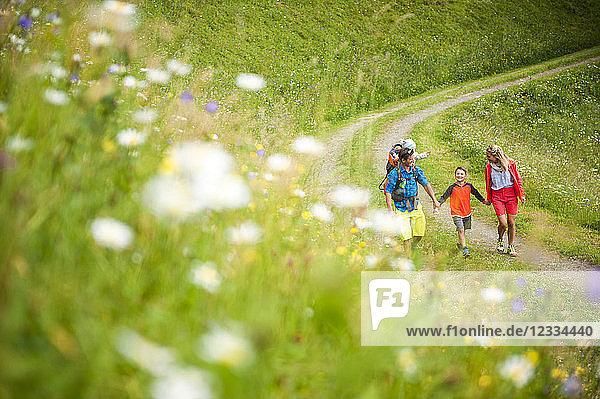 Family hiking in rural landscape