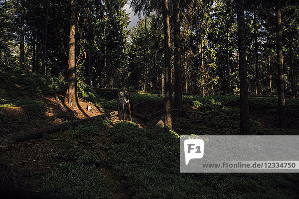 Czechia  Bohemian Switzerland  Elbe Sandstone Mountains  couple on a hiking trip