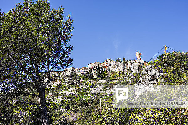 France  Alpes Maritimes  French Riviera  Cote d'Azur  Eze  medieval village