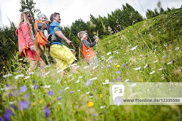 Family hiking in flower meadow