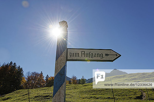 Germany  Bavaria  Upper Bavaria  sign post  exit of an open air mseum against the sun