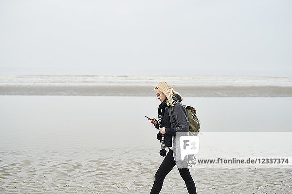 Netherlands  young woman with backpack walking on the beach looking at cell phone