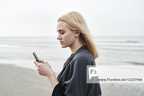 Netherlands  blond young woman using smartphone on the beach