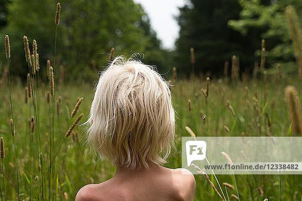 Blondhaariger Junge mit nackten Schultern  der aus langem Gras auf den Wald schaut  Rückansicht