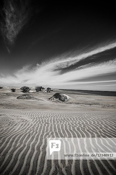 Sand dunes en Bahia Magdalena bay in Baja California Peninsula in the north of Mexico.