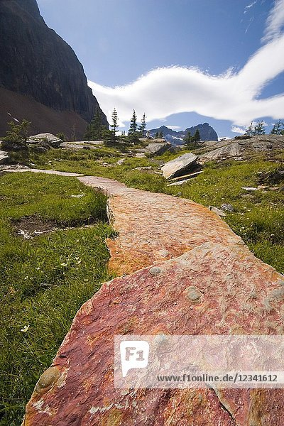 Well maintained trail in backcountry lake ohara. Lake O`Hara area  Yoho National Park  British Columbia  Canada.