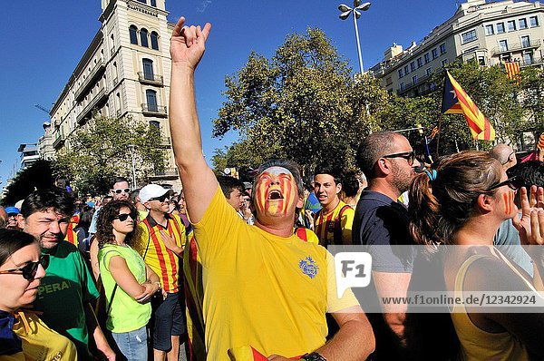 Political demonstration for the independence of Catalonia. Estelades  Catalan independent flags. October 2017. Barcelona  Catalonia  Spain