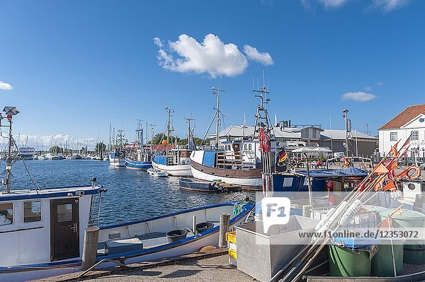 Fishing harbor  Burgstaaken  Fehmarn  Baltic Sea  Schleswig-Holstein  Germany  Europe.
