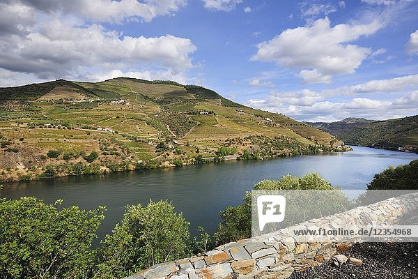 The Douro river and the terraced vineyards of the Port wine near Pinhão. A Unesco World Heritage site  Portugal.