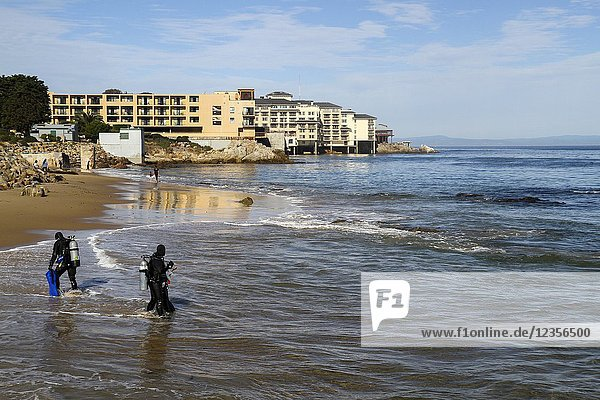 SCUBA divers at San Carlos Beach  waterfront hotels in the distance  Monterey  California  United States. RM.