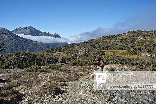 Hiking along the Key Summit ridge off the Routeburn Track  Fjordland  New Zealand.