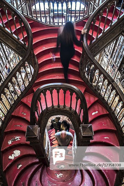 Curved wooden staircase in library  Livraria Lello & Irmão bookstore  Porto  Portugal  Europe.