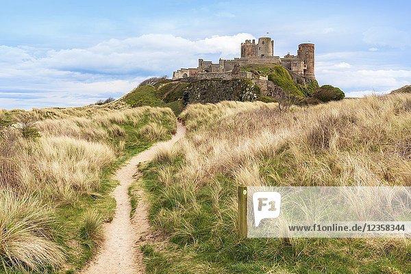 Northumberland Coastal Path and walk with Bamburgh Castle and sand dunes  Bamburgh  Northumberland  England
