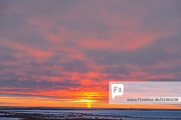 Sunset skies over Hudson Bay at freeze-up     .