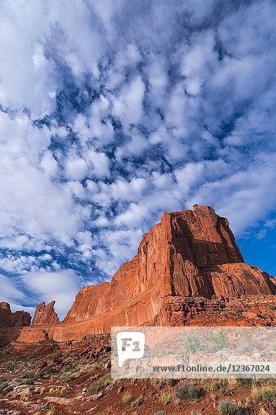 Arches National Park  Grand County  Utah  Usa  America.