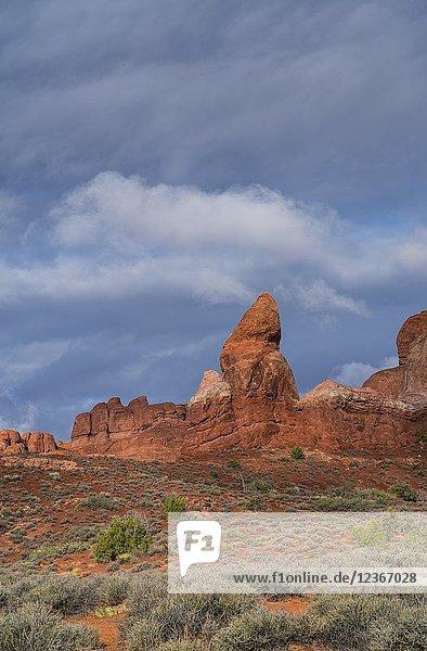 Rock Pinnacles  Arches National Park  Grand County  Utah  Usa  America.
