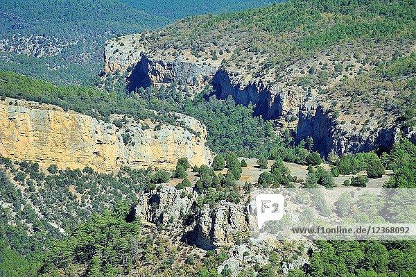 Alto Tajo Natural Park. Zaorejas town  Guadalajara province  Spain