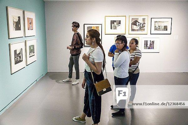 Mexico  Mexico City  Ciudad de  Federal District  Distrito  DF  D.F.  CDMX  Hispanic  Mexican  Alvaro Obregon  Museo de Arte Carrillo Gil Art Museum  gallery  interior  exhibit  Enrique Echeverria  paintings  girl  boy  teen  woman  looking  North America American