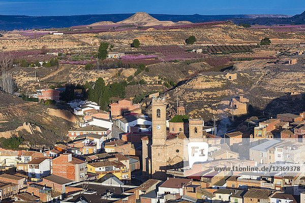 Aitona village  Baix Segre  Lleida  Catalonia  Spain  Europe.