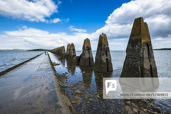 Couple walking on tidal causeway towards Cramond Island in Edinburgh  Scotland  UK. Concrete structures are wartime anti-submarine defences.