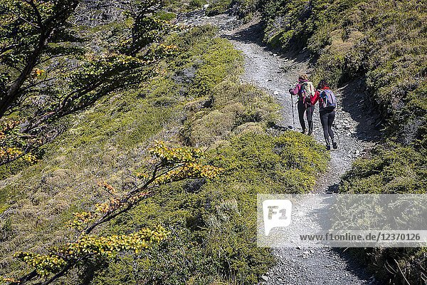 Hikers walking between Torres refuge and Cuernos refuge  Torres del Paine national park  Patagonia  Chile.