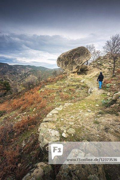 Parco Nazionale dell'Aspromonte  District of Reggio Calabria  Calabria  Italy.