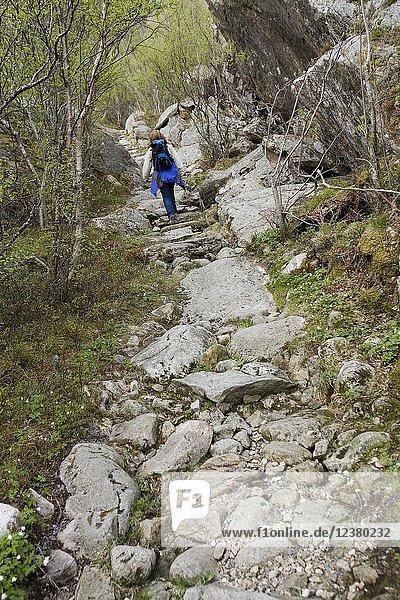 Hiker. Vegaøyan (Vega Islands). UNESCO World Heritage. Norway