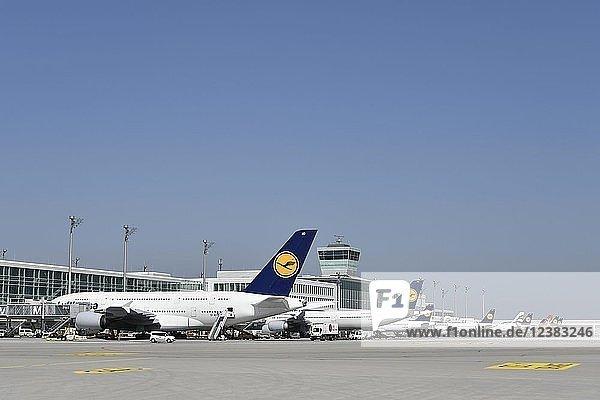 Verschiedene Airlines  Lufthansa  Airbus  A380-800  AGEAN  Air Malta  auf Abfertigungsposition am Satellitengebäude  Flughafen München  Oberbayern  Bayern  Deutschland  Europa