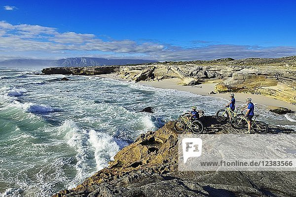 Mountainbiker mit Fatbikes auf Klippe  Radtour am Die Plaat Beach  Nature Reserve  De Kelders  Gansbaai  Westkap  Südafrika