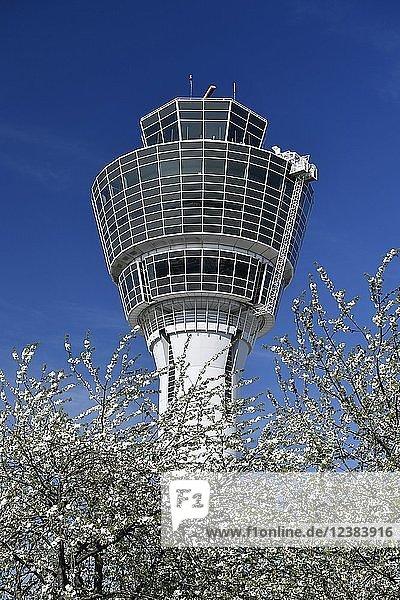 Tower mit blühenden Kirschbäumen  Flughafen München  Oberbayern  Bayern  Deutschland  Europa