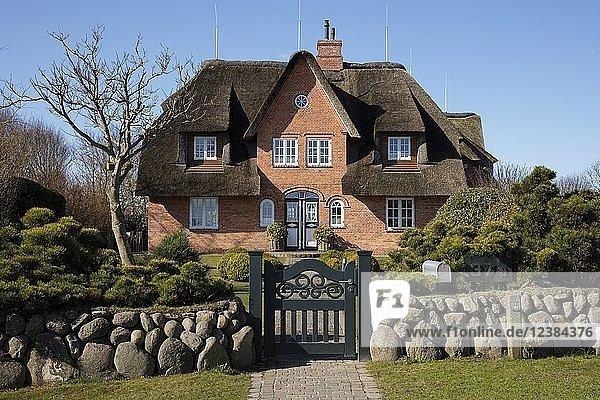 Typisches friesisches Haus  Reetdachhaus  Keitum  Sylt  Nordfriesische Insel  Nordfriesland  Schleswig-Holstein  Deutschland  Europa