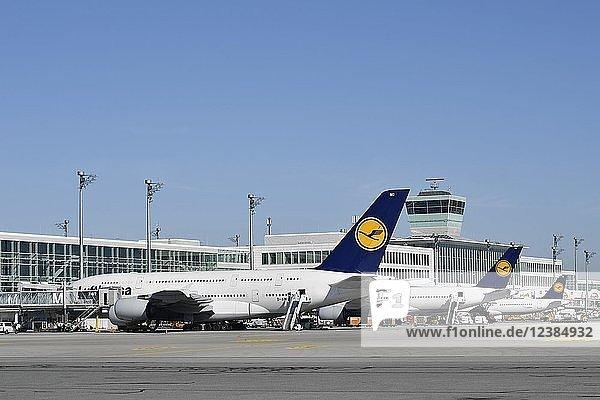 Lufthansa  Airbus  A380-800  Terminal 2  Flughafen München  Oberbayern  Bayern  Deutschland  Europa