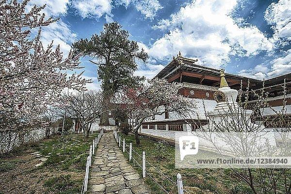 Buddhistischer Tempel Kyichu Lhakhang im Frühling  Paro  Paro-District  Himalaja-Region  Bhutan  Asien