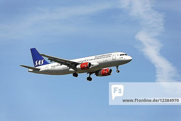 Scandinavian Airbus A320 passenger aircraft  on landing approach to Franz Josef Strauss Airport  Munich  Upper Bavaria  Germany  Europe
