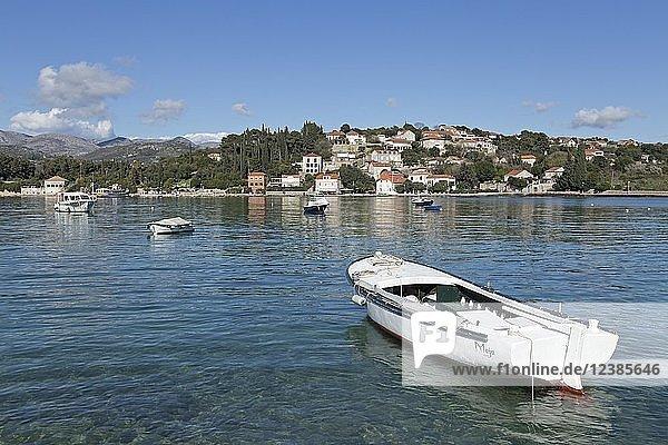Boote  Küstenort Donje Celo  Insel Kolocep  Elaphiten-Inseln  Dalmatien  Kroatien  Europa