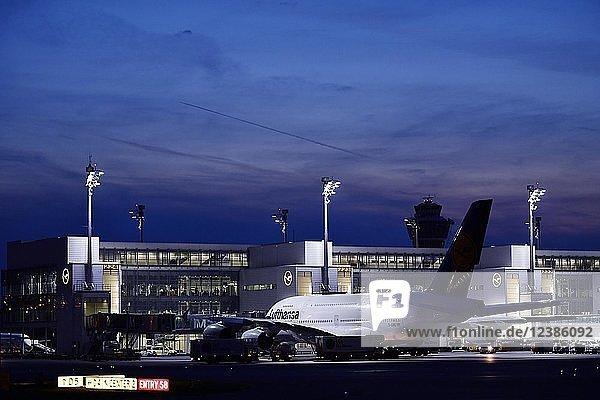 Lufthansa  Airbus  A380-800 mit Push Back Truck vor Terminal 2  Abenddämmerung  Flughafen München  Oberbayern  Bayern  Deutschland  Europa