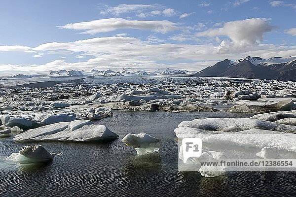 Kleine Eisberge in Gletschersee  Gletscherlagune Jökulsárlón  hinten Gletscher Vatnajökull  Südisland  Island  Europa