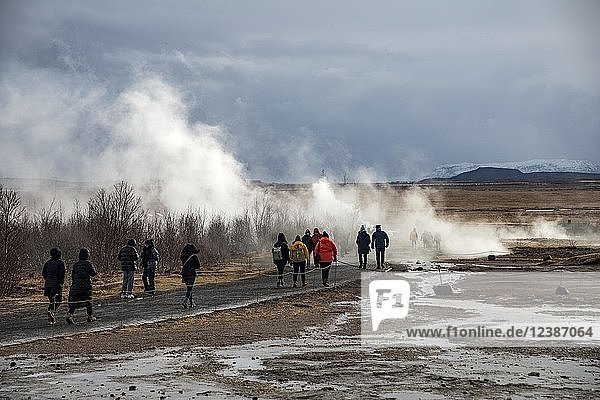 Tourists at the Haukadalur geothermal field  steaming hot springs  Golden Circle  South Iceland  Iceland  Europe