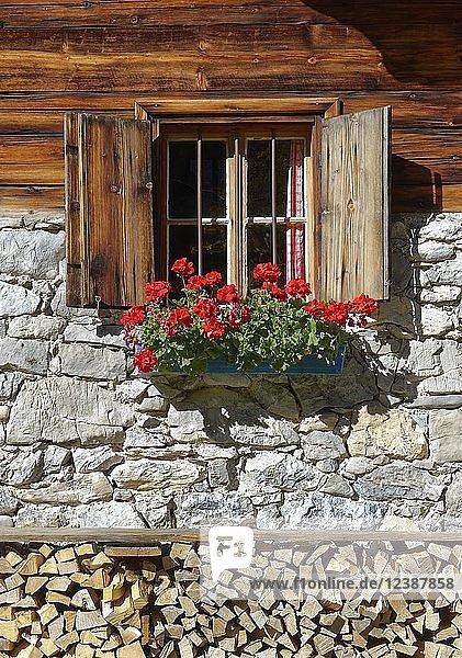 Fenster mit roten Geranien an Bauernhaus  Eng-Alm  Großer Ahornboden  Rißtal  Tirol  Österreich  Europa