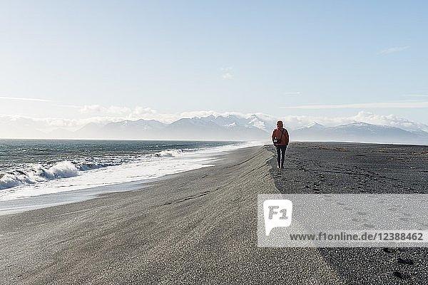 Mann läuft am Meer im schwarzen Sandstrand  Lavastrand  schneebedeckte Berge  Hvalnes Nature Reserve  Südisland  Island  Europa